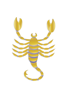 compatibilitate scorpion